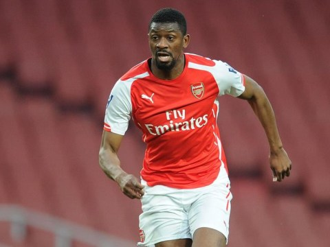 Abou Diaby 'in talks over new Arsenal contract, he's set to stay put'
