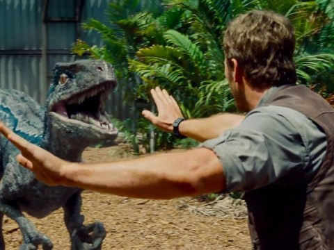 Jurassic World sequel to begin filming in February – and the dinosaurs are coming to London