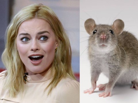 What a charmer! Jared Leto gave Margot Robbie a rat and a love letter as a present on Suicide Squad set