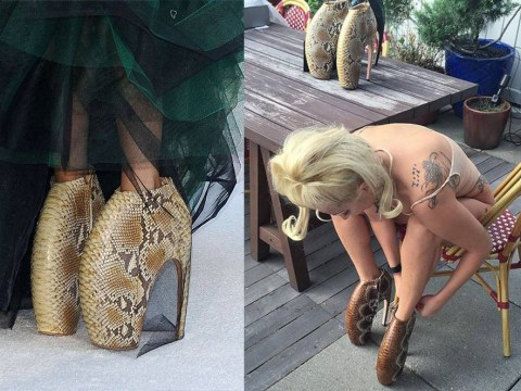 Lady Gaga shells out six figure sum for Alexander McQueen Armadillo shoes, shows them off on Instagram