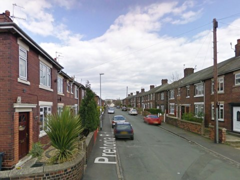 Girl, six, suffers multiple facial injuries after dog attack