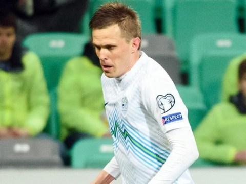 Tottenham 'in talks with Fiorentina over £5.5m Josip Ilicic transfer'