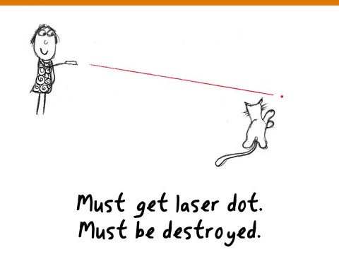 Funny illustrations provide the ultimate guide to being an incredibly annoying cat