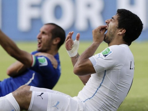 Giorgio Chiellini has admitted he exaggerated the Luis Suarez bite to get him sent off