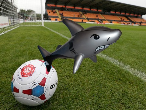 Football fan in court after 'hitting steward with inflatable shark' as he celebrated