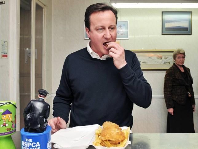 Conservative Party leader David Cameron eats in a fish and chip shop in Long Town village, on May 4, 2010. David Cameron was in Cumbria during a non-stop 24 hour campaigning session before the General election. AFP PHOTO/ POOL/ CARL DE SOUZA (Photo credit should read CARL DE SOUZA/AFP/Getty Images)