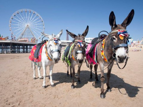 23 reasons Blackpool is way better than you think it is