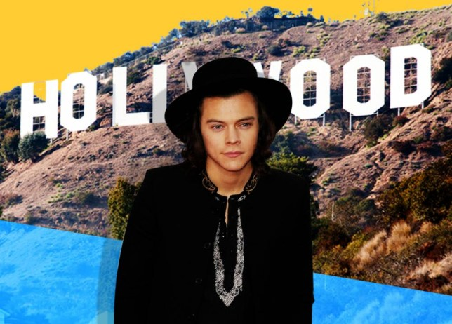 Lead_image.jpg Harry Styles in front of Hollywood sign Credit: ALAMY IMAGES /Metro