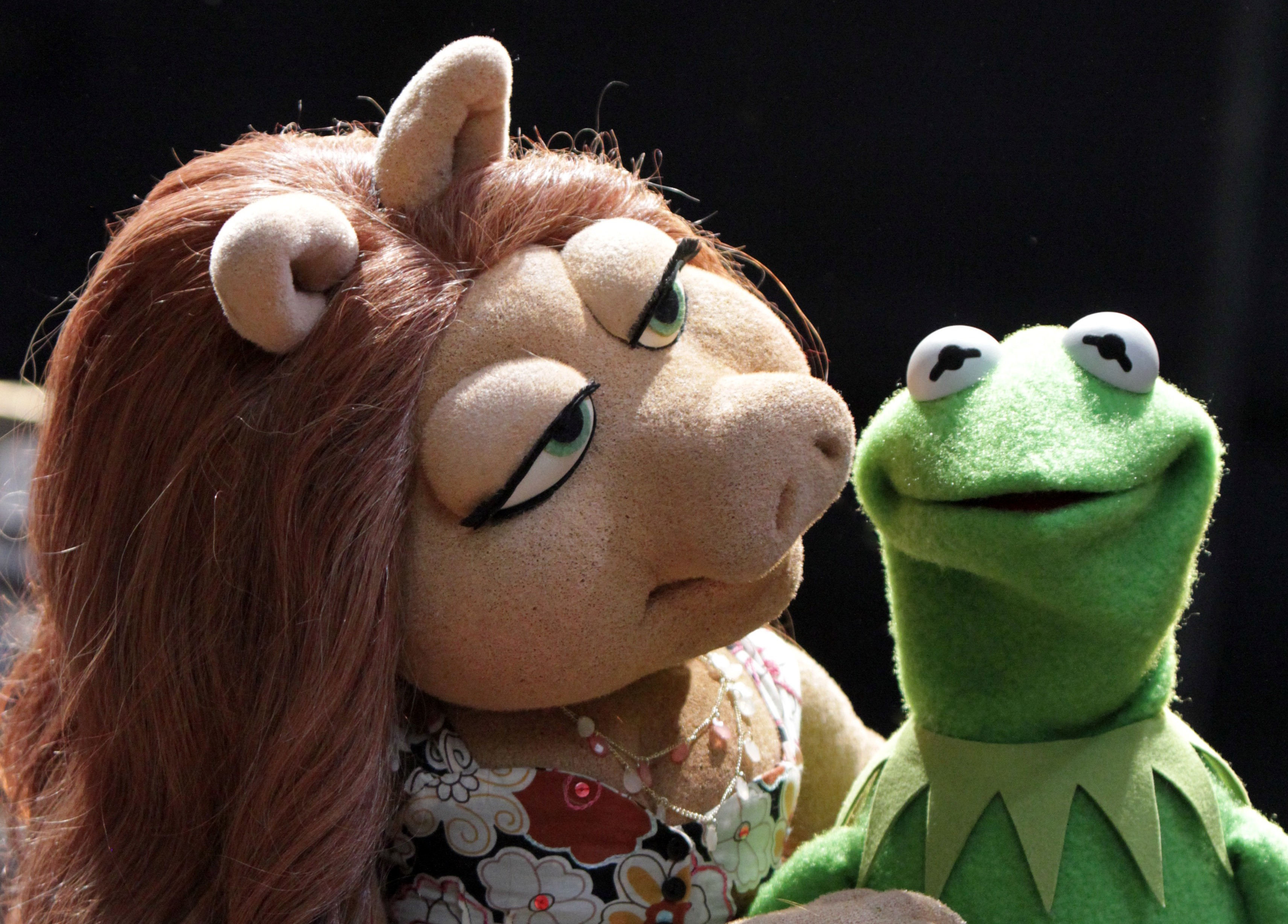 Kermit reveals why frogs find pigs attractive and opens up about new love interest following Miss Piggy split