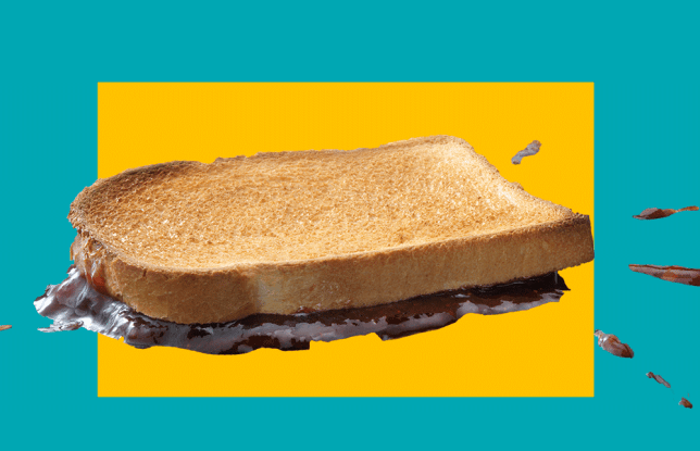 science behind the five second rule