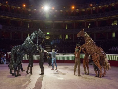 Fans are devastated that West End show War Horse has been cancelled after 7 years