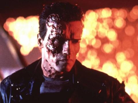 Arnold Schwarzenegger's Terminator could be facing termination: 'Hasta la vista, baby'