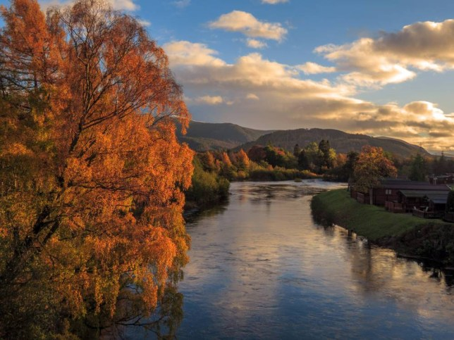 Autumn on the river Spey, Aviemore