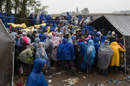Migrants queue at the border crossing with Croatia near the village of Berkasovo, Serbia October 19, 2015. Thousands of migrants clamoured to enter European Union member Croatia from Serbia on Monday after a night spent in the cold and mud of no-man's land, their passage west slowed by a Slovenian effort to impose limits on the flow to western Europe. REUTERS/Marko Djurica