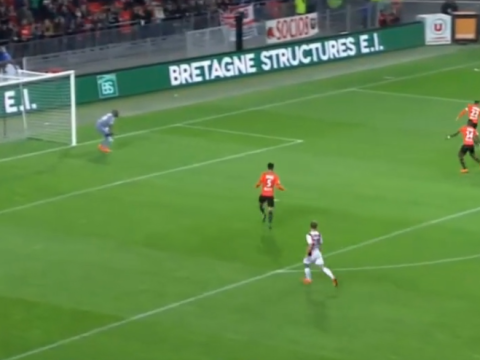 Ex-Newcastle winger Hatem Ben Arfa scores solo wondergoal for Nice – video