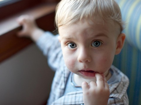 12 things every parent with a toddler boy will understand