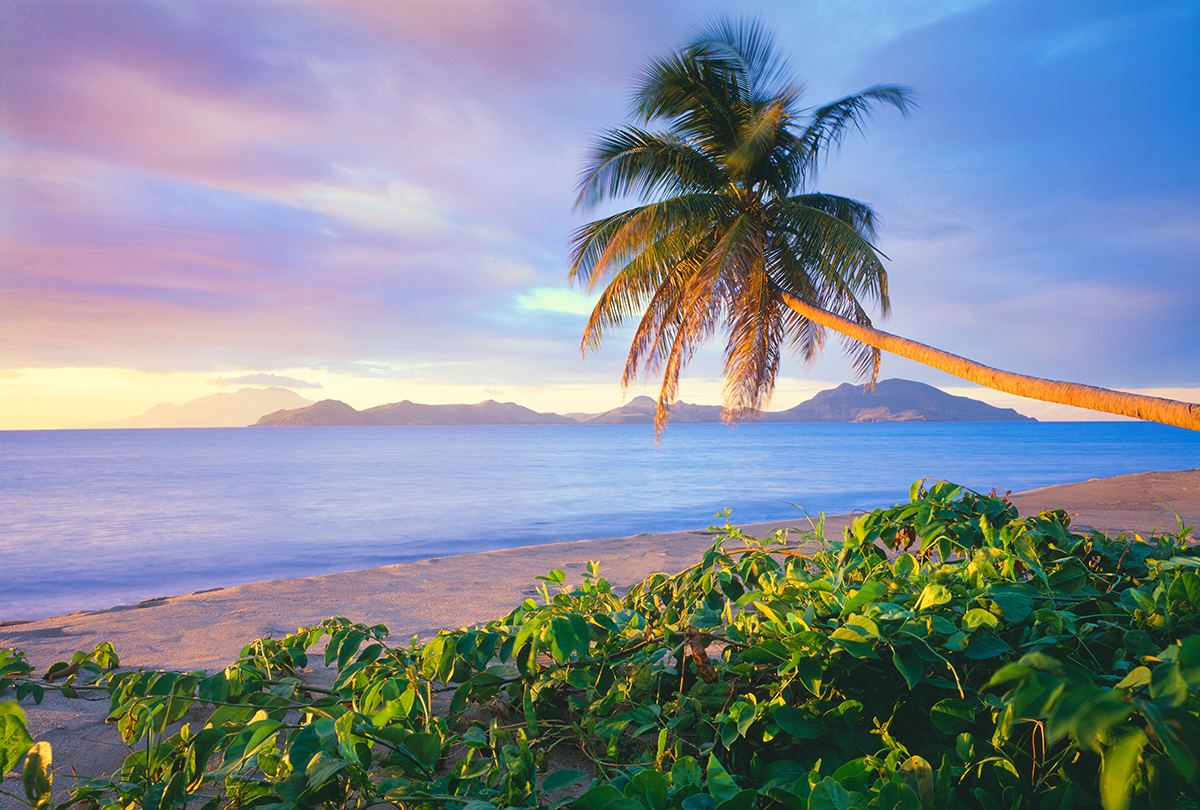 Forget Barbados and St Lucia, your next Caribbean holiday should be Nevis