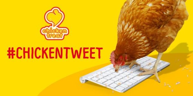 chicken treat are trying to get this chicken to send a coherent tweet by the end of october