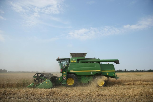 Farmers Association To Announce Grain Harvest Results Sean Gallup/Getty Images