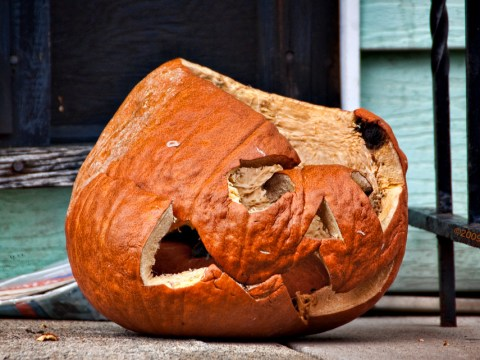 Halloween is sh*t and if you don't agree with me you're an idiot