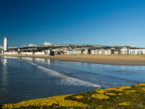 11 things you'll only know if you're from Swansea