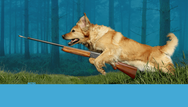 Dog called Trigger shoots owner during hunt Source: Getty Images Credit: METRO/mylo