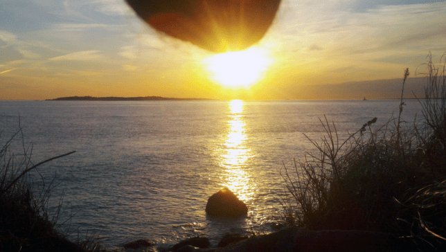 Nutscaping sees men taking photos of their balls in front of stunning landscapes