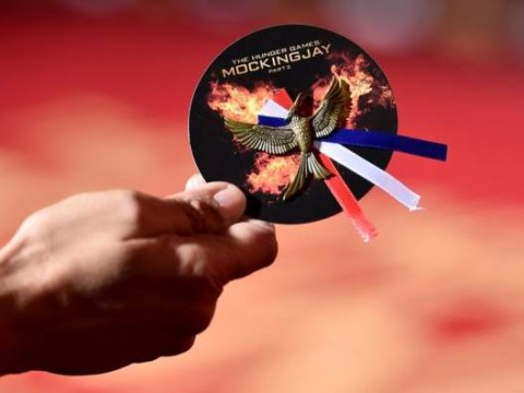 Hunger Games stars wear special Tricolore Mockingjay pins in tribute to Paris at LA premiere
