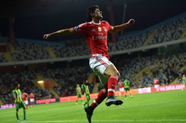Benfica's forward Goncalo Guedes celebrates after scoring a goal during the Portuguese league football match CD Tondela vs SL Benfica at the Aveiro Municipal stadium in Aveiro on October 30, 2015. AFP PHOTO / FRANCISCO LEONGFRANCISCO LEONG/AFP/Getty Images