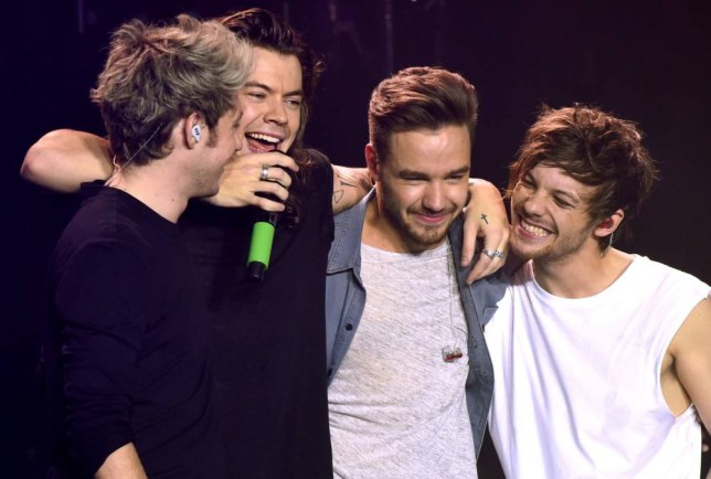 Niall Horan, Liam Payne, Harry Styles, Louis TomlinsonnOne Direction final show, Sheffield Arena, Britain - 31 Oct 2015nPic: DFS/ David Fisher/ Rex Shutterstock