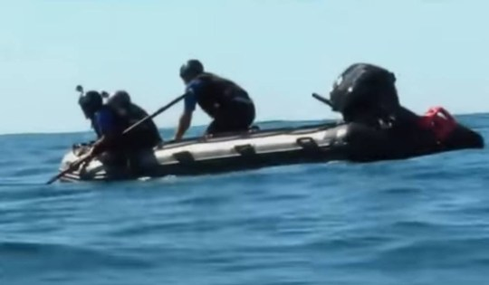 whale2.jpg Rescue team frees whale from fishing line