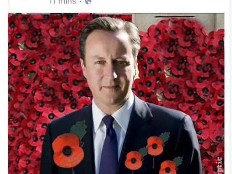 David Cameron gets the meme treatment after fake poppy is photoshopped into portrait