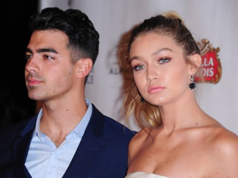 Sorry to break it to you guys but Gigi Hadid is 'too busy' to date Joe Jonas now