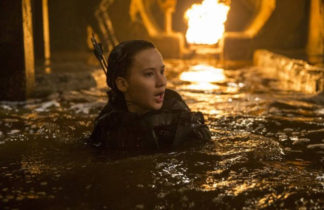 Hunger Games Officially Over As Author Suzanne Collins Pens Goodbye