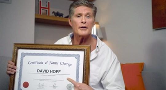 david-hoff