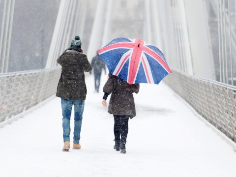 13 things all snow lovers know to be true