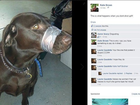 Woman duct tapes her dog's mouth shut and posts picture on Facebook