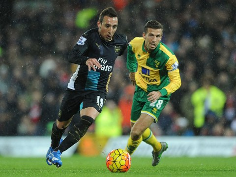 Santi Cazorla to miss three months after picking up injury during Arsenal v Norwich