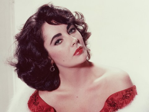 Elizabeth Taylor ran an underground AIDS safe house so patients could access life-saving medication