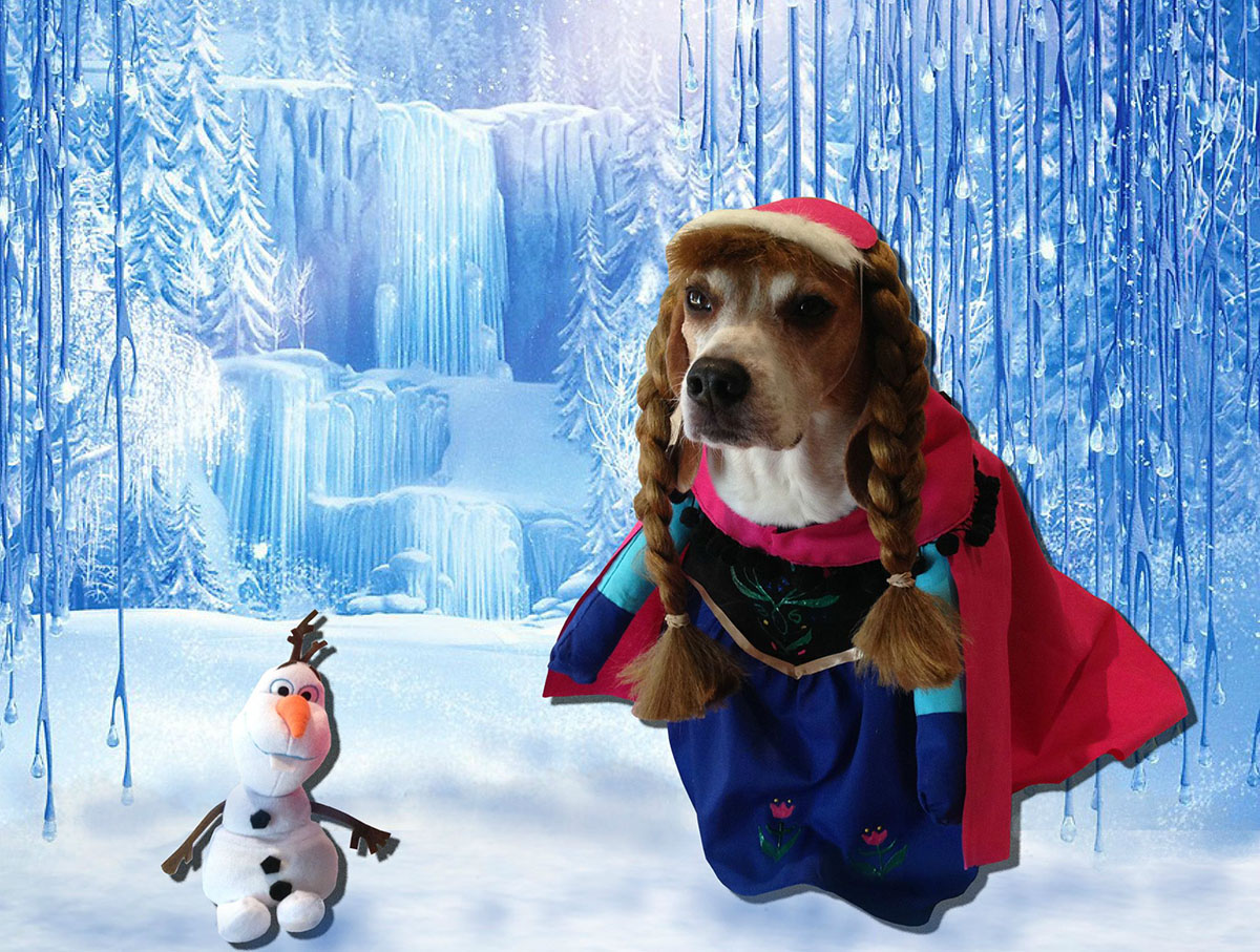 Cooper the dog as various Disney characters