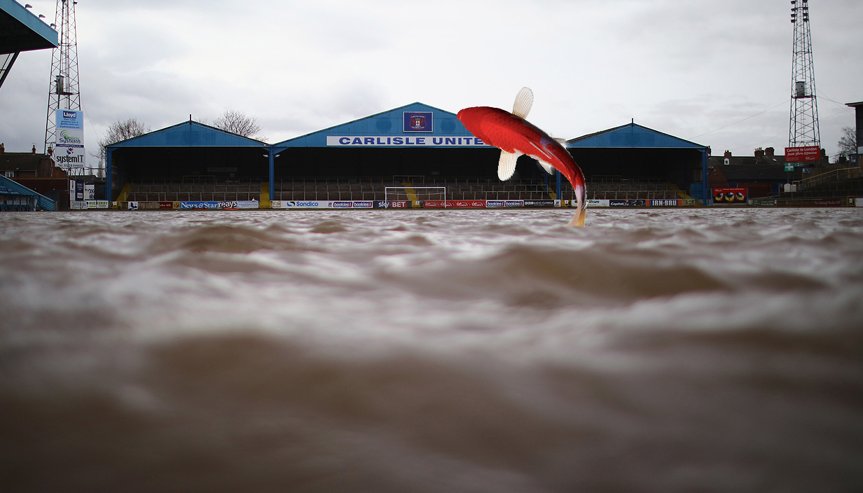 real life finding nemo at carlisle Source: Getty Images Credit: METRO