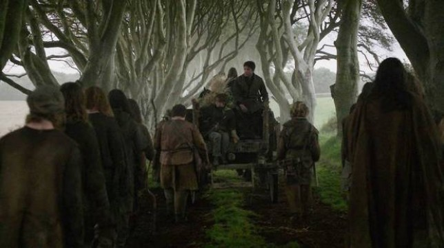 dark hedges game of thrones