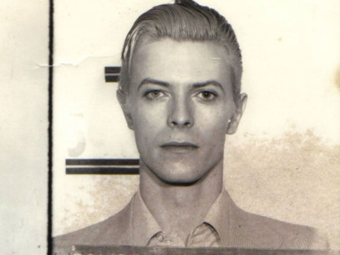 Everyone is sharing David Bowie's mug shot from 1976 which is the complete essence of Bowie