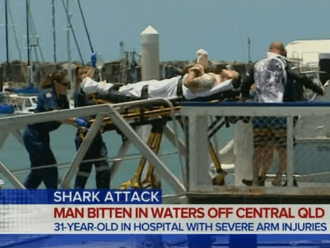 Diver fights off shark in Australia, suffering 'serious injuries'