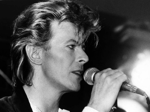 The Thin White Duke, Ziggy Stardust, Jareth the Goblin King…why David Bowie was special to so many people
