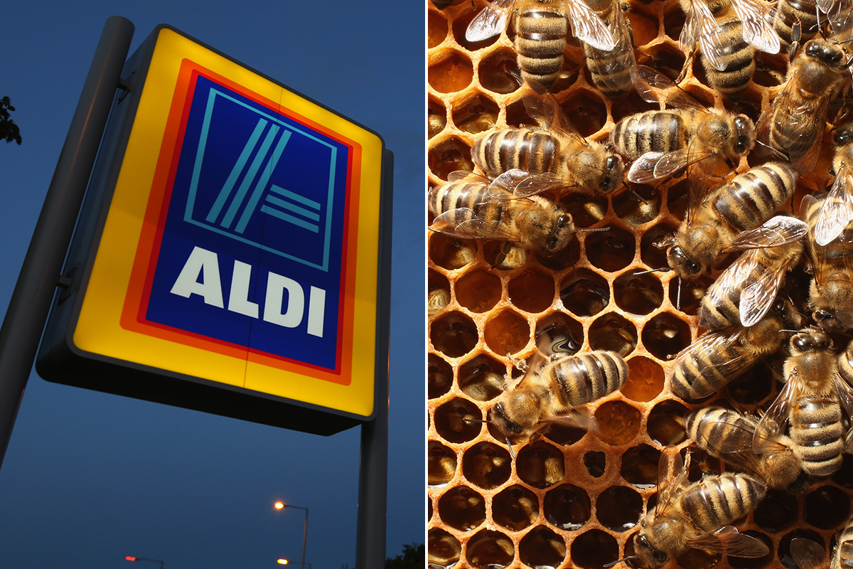 Aldi becomes first supermarket to ban the pesticides that are killing off all the bees