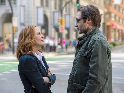 Gillian Anderson offered 'half the salary of David Duchovny' for The X Files reboot