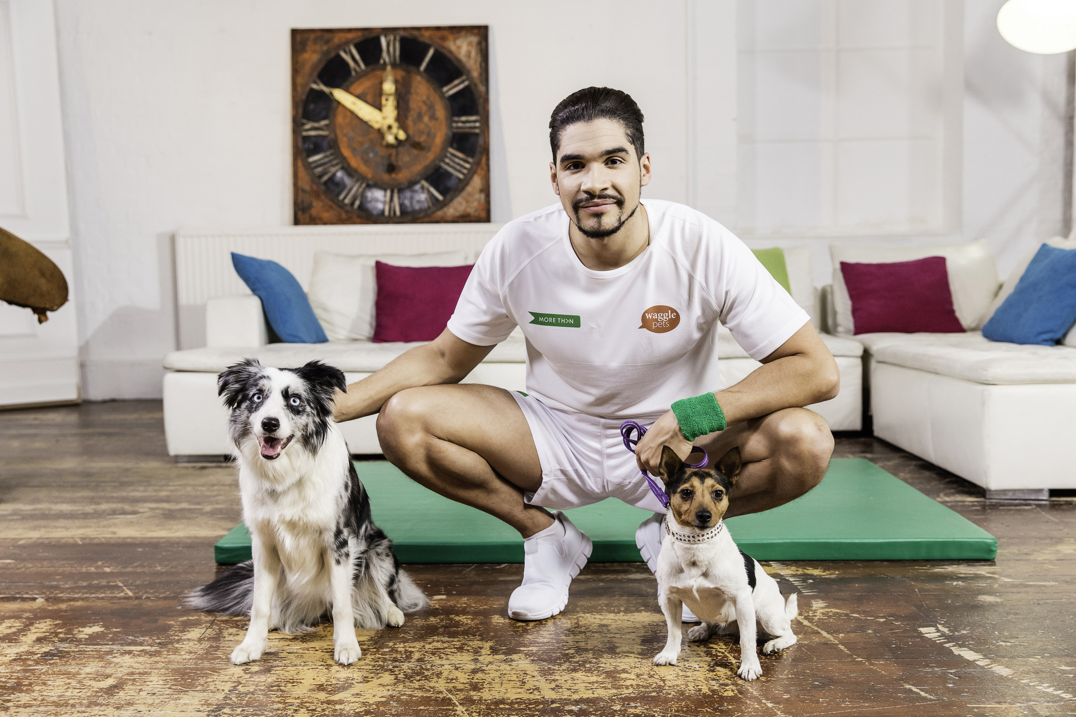 Olympian Louis Smith is releasing a fitness video – for dogs