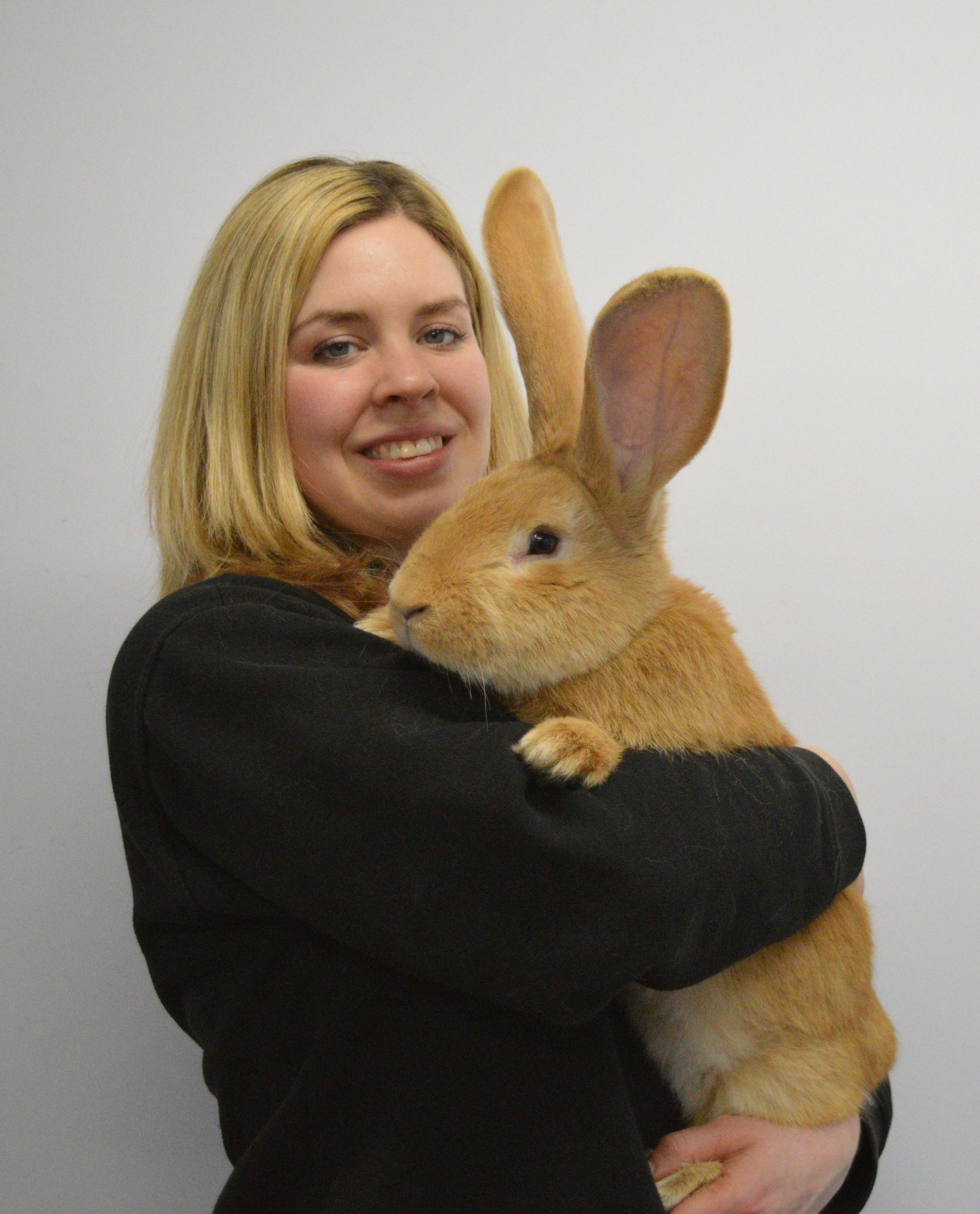 Scottish SPCA undated handout photo of Animal Care Assistant Emma Calder with seven month old continental giant rabbit named Atlas who is seeking a new home. PRESS ASSOCIATION Photo. Issue date: Tuesday February 2, 2016. Staff at the charity's centre in Cardonald, Glasgow, took in the rabbit when his owner could no longer look after him. See PA story ANIMALS Rabbit. Photo credit should read: Scottish SPCA /PA Wire NOTE TO EDITORS: This handout photo may only be used in for editorial reporting purposes for the contemporaneous illustration of events, things or the people in the image or facts mentioned in the caption. Reuse of the picture may require further permission from the copyright holder.
