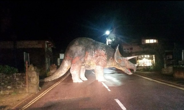 Pictured: The dinosaur in the road. Confused motorists could not believe their eyes when were confronted with an unusual road block - a 25ft long dinosaur. Pictures circulated on social media of the 8ft 6ins tall Triceratops blocking the entire width of the High Street in the village of Godshill on the Isle of Wight. Pranksters had moved the enormous model from its home in the front garden of a fossil and gem shop onto the road on Friday night. Pub manager Chris Collingshead was driving back to his home in Shanklin from a late shift at work in Newport at 2.30am when he came across the enormous Triceratops. SEE OUR COPY FOR DETAILS. Please byline: Chris Hollingshead/Solent News © Chris Hollingshead/Solent News & Photo Agency UK +44 (0) 2380 458800